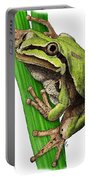 Arizona Tree Frog Portable Battery Charger