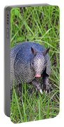 Armadillo Attitude Portable Battery Charger