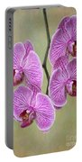 Artsy Phalaenopsis Orchids Portable Battery Charger