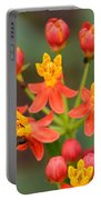 Asclepias Curassavica And Bee Portable Battery Charger
