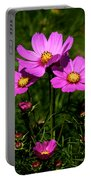 Asheville Wildflowers Portable Battery Charger