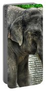 Asian Elephant  0a Portable Battery Charger