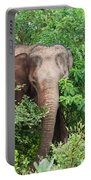 Asian Elephant  Elephas Maximus Portable Battery Charger