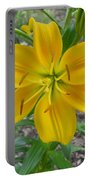 Asiatic Lily 2 Portable Battery Charger
