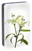 Asiatic Lily Flowers Against White Portable Battery Charger