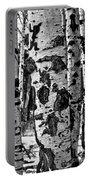 Aspen Art Portable Battery Charger