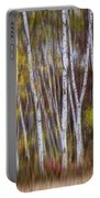 Birch Trees At Lake Maria State Park Minnesota Portable Battery Charger