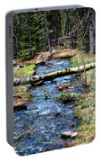 Aspen Crossing Mountain Stream Portable Battery Charger