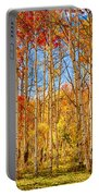 Aspen Fall Foliage Portrait Red Gold And Yellow  Portable Battery Charger
