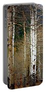 Aspen In The Rockies Portable Battery Charger