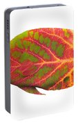 Aspen Leaf Tropical Fish 1 Portable Battery Charger