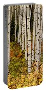 Aspen Panoramic Portable Battery Charger