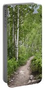 Aspen Path Portable Battery Charger