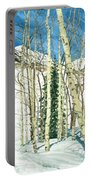 Aspen Shelter Portable Battery Charger