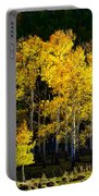 Aspen Stand Portable Battery Charger