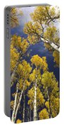 Aspen Tops  Portable Battery Charger