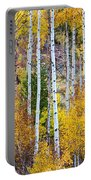 Aspen Tree Magic Portable Battery Charger