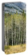 Aspen Trees Along The Bow Valley Portable Battery Charger