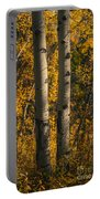 Aspen Trees In Autumn Portable Battery Charger