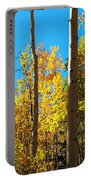 Aspen Trees In Fall Portable Battery Charger