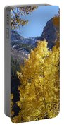 Aspen Window Portable Battery Charger