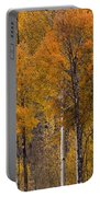 Aspens Ablaze Portable Battery Charger