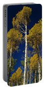 Aspens Against Blue Sky Portable Battery Charger