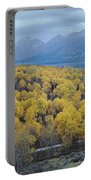 Aspens And The Tetons Portable Battery Charger