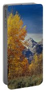 1m9353-aspens In Autumn And The Teton Range - V Portable Battery Charger