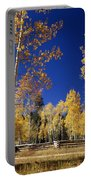 Aspens In Fall - V Portable Battery Charger