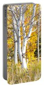 Aspens In Fall Portable Battery Charger