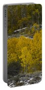 Aspens In Snow Portable Battery Charger