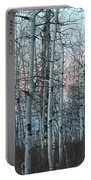 Aspens In Twilight Portable Battery Charger