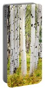 Aspens Portable Battery Charger