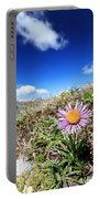 Aster Alpinus Portable Battery Charger