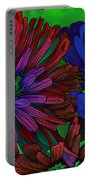 Asters Portable Battery Charger