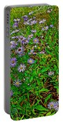 Asters On Heron Lake Trail In Grand Teton National Park-wyoming- Portable Battery Charger