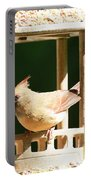 At My Birdfeeder Portable Battery Charger
