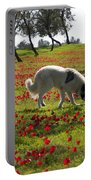 At Ruchama Forest Israel 1 Portable Battery Charger