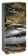 At The Duck Pond V5 Portable Battery Charger