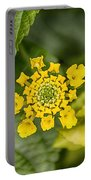 Atlanta Botanical Garden Flowers V9 Portable Battery Charger