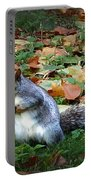 Attentive Squirrel Portable Battery Charger