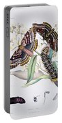 Australian Butterflies Portable Battery Charger by Philip Ralley