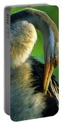 Australian Darter Preening Portable Battery Charger