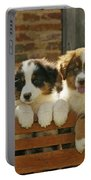 Australian Sheepdog Puppies Portable Battery Charger