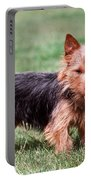Australian Terrier Dog Portable Battery Charger