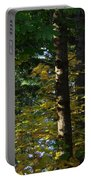 Autumn 10 Portable Battery Charger