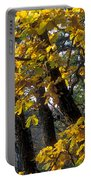 Autumn Portable Battery Charger by Anonymous