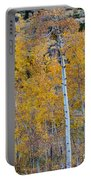 Autumn Aspens Portable Battery Charger by James BO  Insogna
