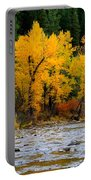 Autumn Beauty In Boise County Portable Battery Charger
